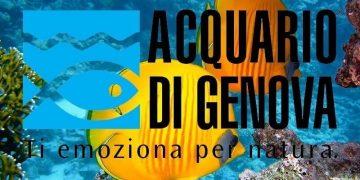 Biglietti scontati acquario di genova