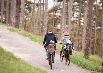 come avere incentivo bici