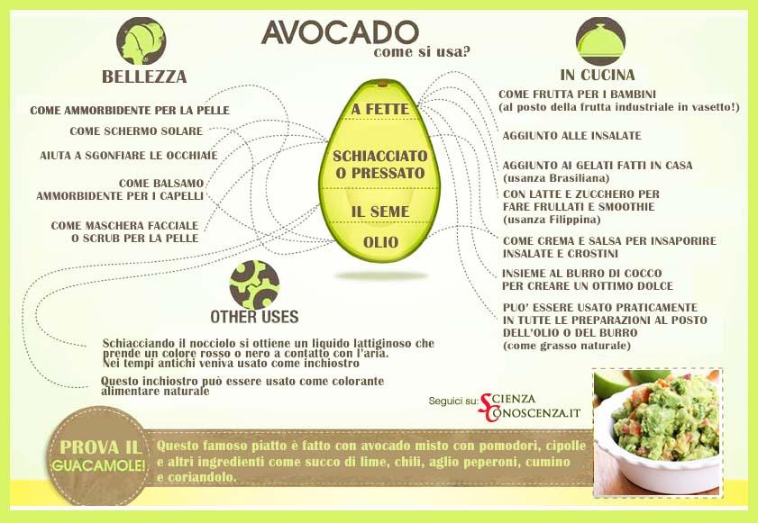 olio-avocado-capelli-vio-guide-online-it
