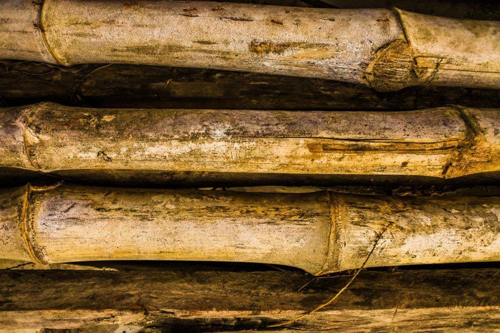 perchè-mettere-pavimenti-bamboo