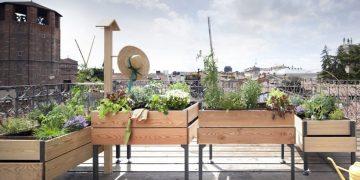come coltivare orto balcon
