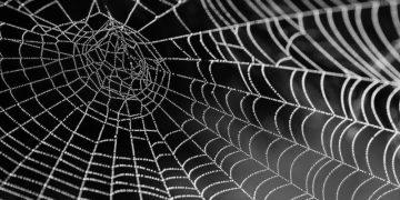 Come creare delle ragnatele per Halloween