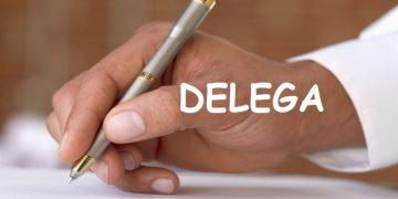 delega-generica-caratteristiche