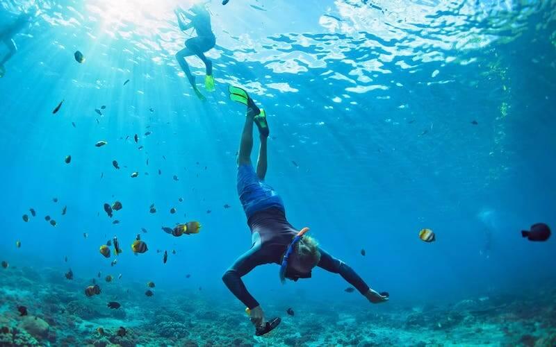 Dove fare immersioni in Liguria