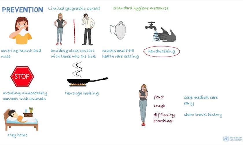 Prevenzione linee guida OMS